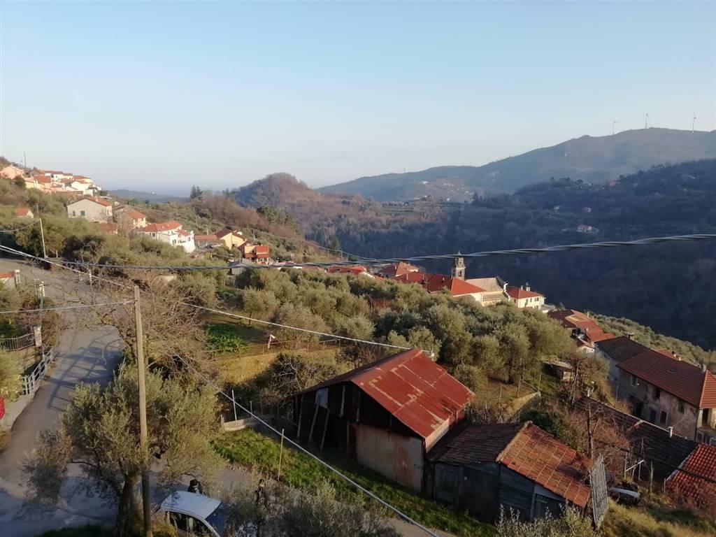 Soluzione Semindipendente in vendita a Quiliano, 8 locali, zona asca, prezzo € 138.000   PortaleAgenzieImmobiliari.it