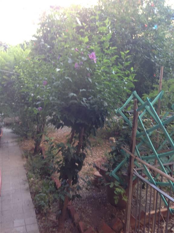 Foto - Rif. 4909RA96048