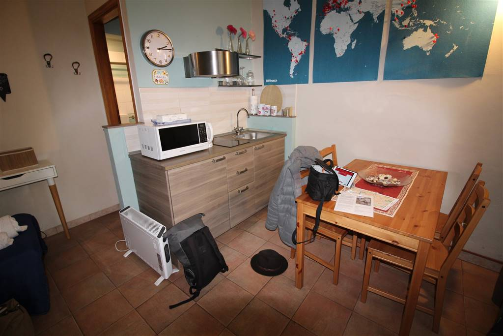 PORTA ROMANA, FIRENZE, Appartamento in vendita di 30 Mq, Ottime condizioni, Riscaldamento Autonomo, Classe energetica: G, Epi: 200,1 kwh/m2 anno,