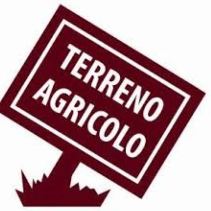 Terreno agricoloaPRATO