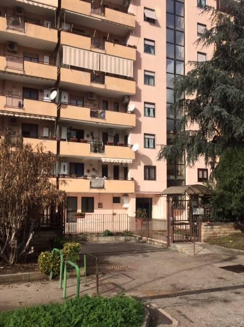 Trilocale in Via Degli Oleandri, Caserta 2 - (centurano -cerasola -167), Caserta