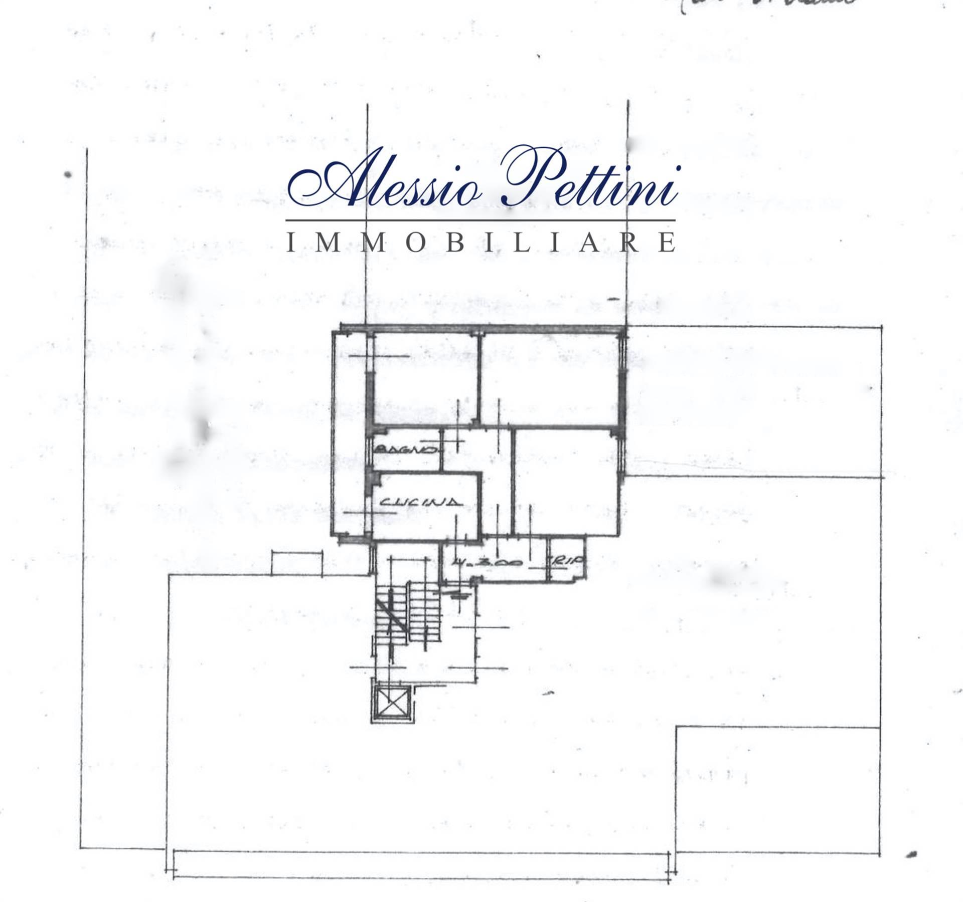 Planimetria - Rif. 3214G