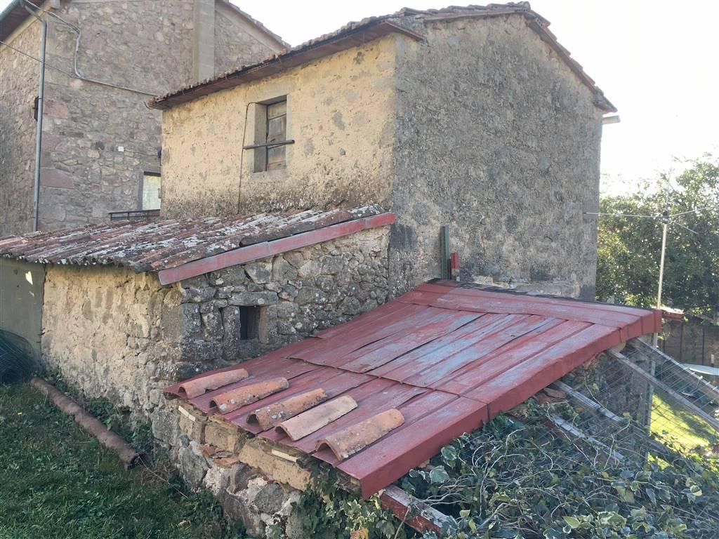 Magazzino in vendita a Santa Fiora, 2 locali, zona Zona: Bagnolo, prezzo € 16.000 | CambioCasa.it