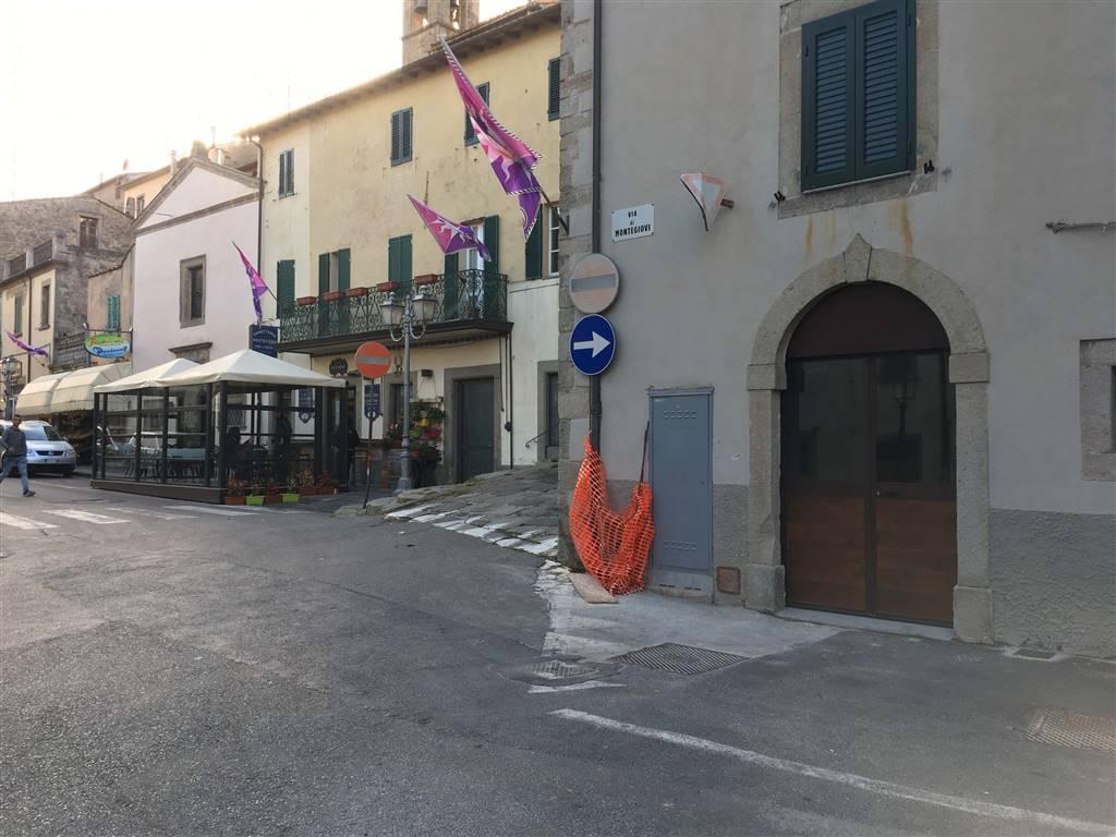 Immobile Commerciale in affitto a Castel del Piano, 2 locali, zona Zona: Monte Amiata versante grossetano, prezzo € 450 | CambioCasa.it