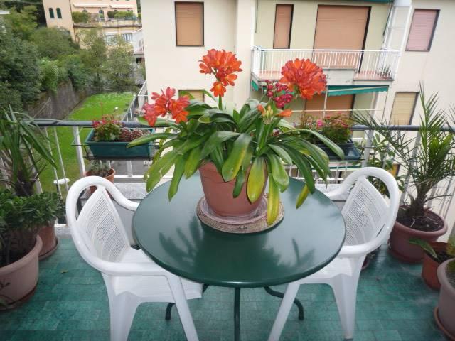 Appartamento in affitto a Rapallo, 2 locali, prezzo € 800 | CambioCasa.it