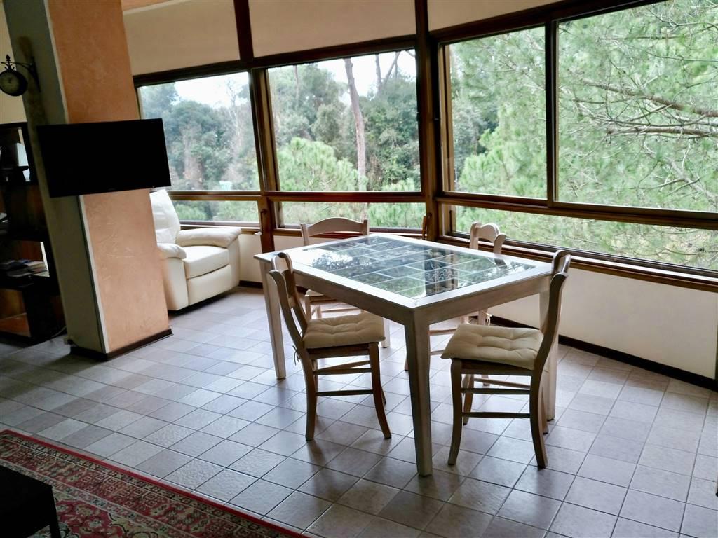 Appartamento, Torre Del Lago Puccini, Viareggio, in ottime condizioni