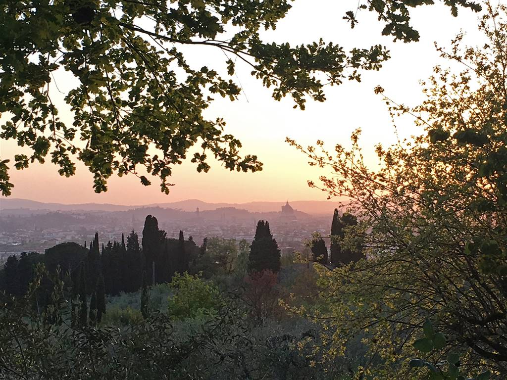 panorama su Firenze dal giardino