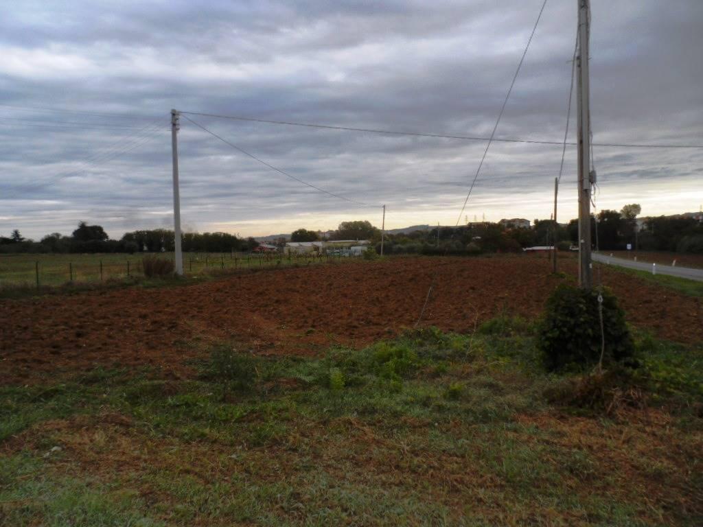 Terreno agricoloaCHIARAVALLE