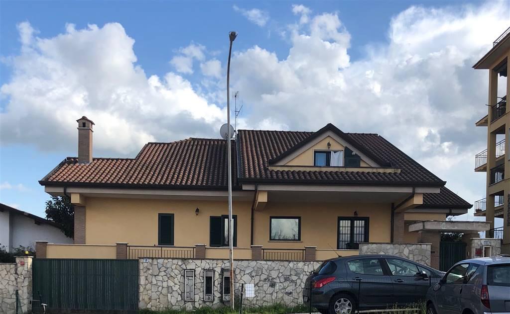 Appartamento in affitto a Frosinone, 2 locali, zona Località: VIA AMERICA LATINA, prezzo € 480   CambioCasa.it