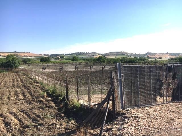 Terreno Agricolo in vendita a Campobello di Licata, 9999 locali, zona Località: MUSTA, Trattative riservate | CambioCasa.it