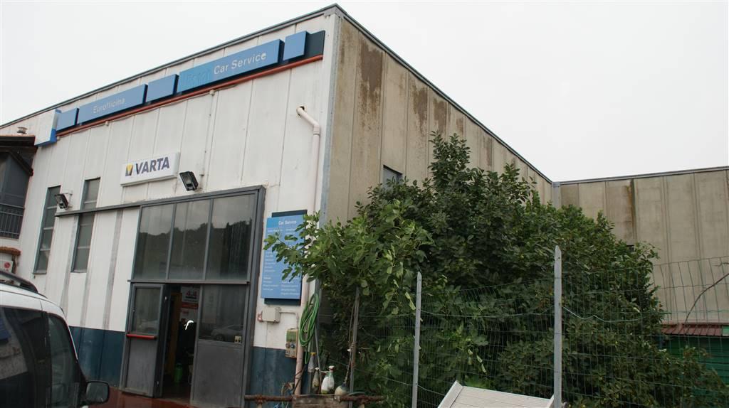 Capannone in vendita a Castiglione della Pescaia, 1 locali, zona Località: LOCALITA LA VALLE, prezzo € 230.000 | CambioCasa.it