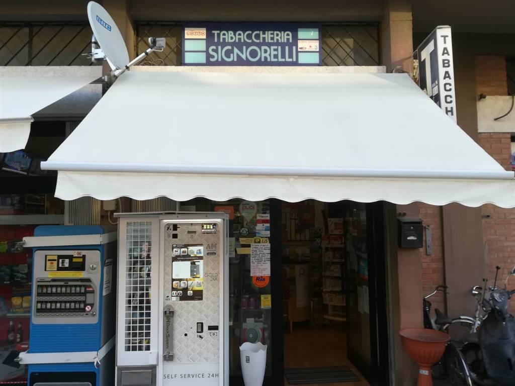 Locale commerciale, Stadio, Grosseto