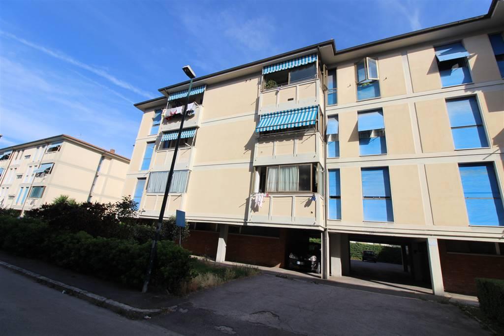 Appartamento, Barbanella, Grosseto, abitabile