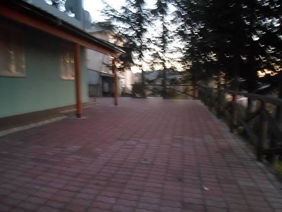 Foto ID 14353769