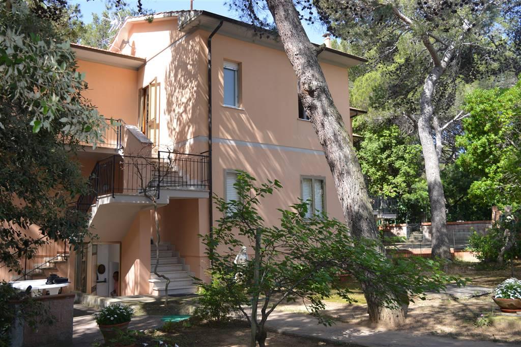 Trilocale, Castiglioncello, Rosignano Marittimo