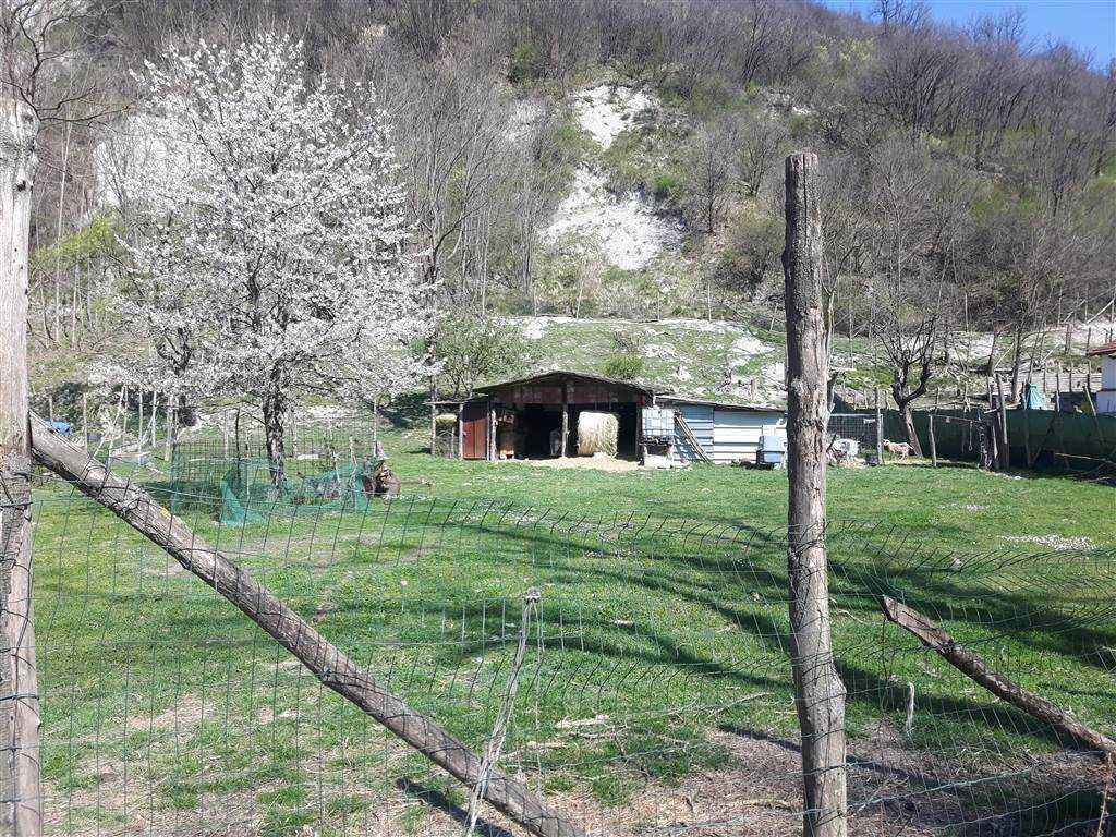 Terreno Agricolo in vendita a Stazzano, 9999 locali, prezzo € 30.000 | PortaleAgenzieImmobiliari.it