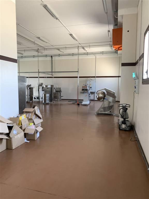 Laboratorio in affitto a Pozzolo Formigaro, 1 locali, prezzo € 1.000 | PortaleAgenzieImmobiliari.it