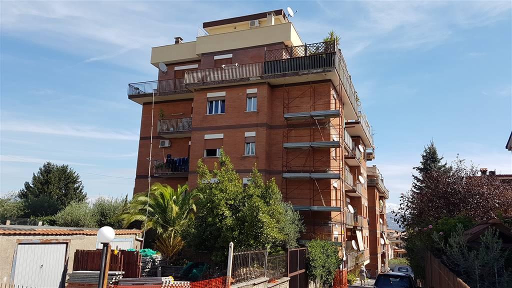 Appartamento in affitto a San Cesareo, 3 locali, prezzo € 320 | CambioCasa.it