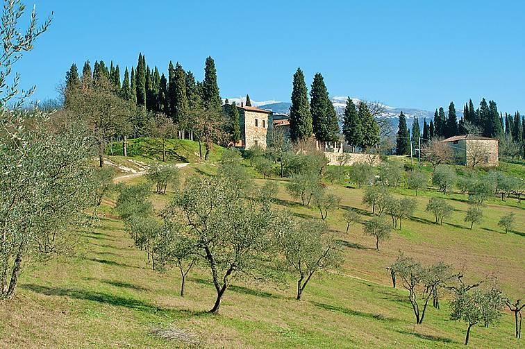Colonica, Bombone, Rignano Sull'arno, ristrutturata