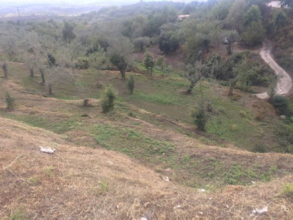 Terreno Agricolo in vendita a Sessa Aurunca, 9999 locali, zona Località: PONTE, prezzo € 23.000 | CambioCasa.it