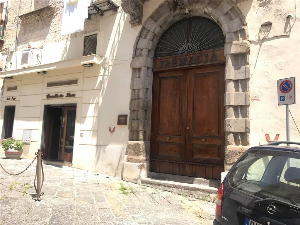 Attività / Licenza in affitto a Sessa Aurunca, 2 locali, prezzo € 650 | CambioCasa.it