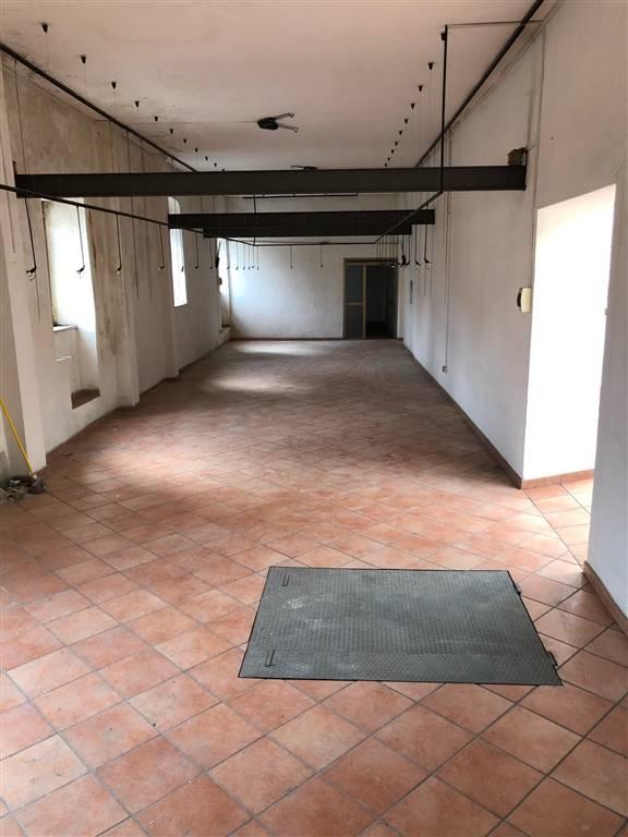 Attività / Licenza in affitto a Sessa Aurunca, 1 locali, prezzo € 1.500 | CambioCasa.it