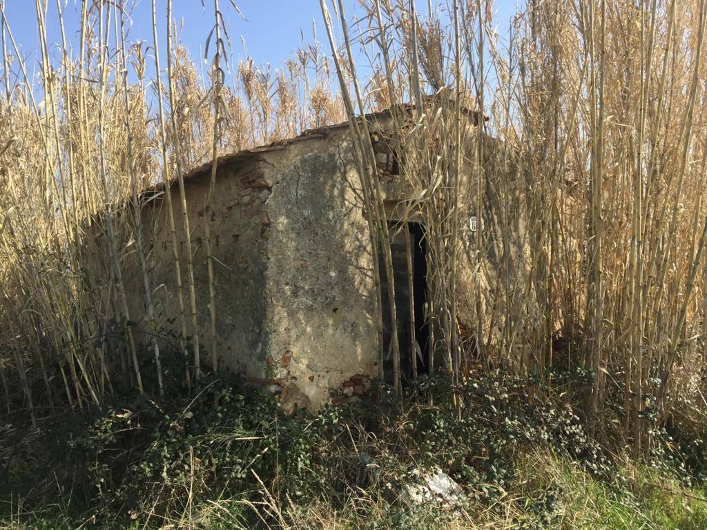 Vendita Annesso agricolo CASTAGNETO CARDUCCI