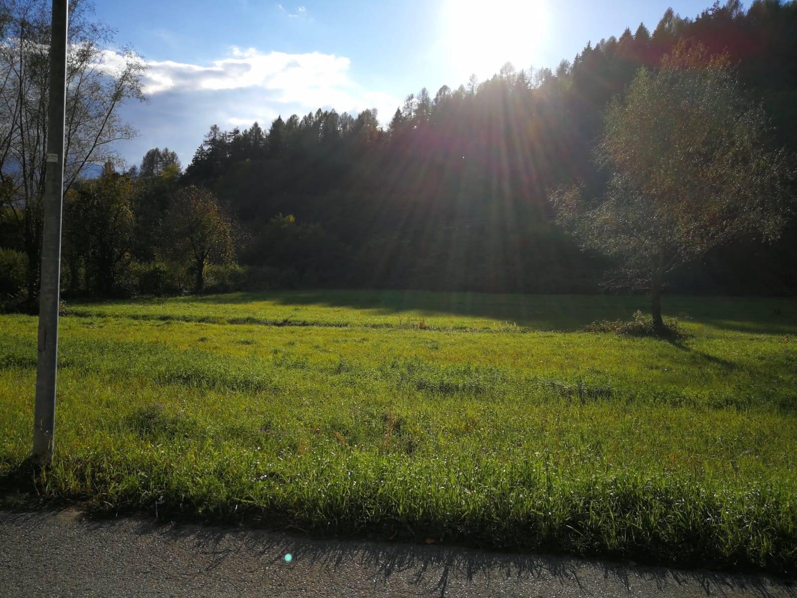 Terreno Agricolo in vendita a Pergine Valsugana, 9999 locali, zona Località: BRAZZANIGA, prezzo € 45.000 | CambioCasa.it