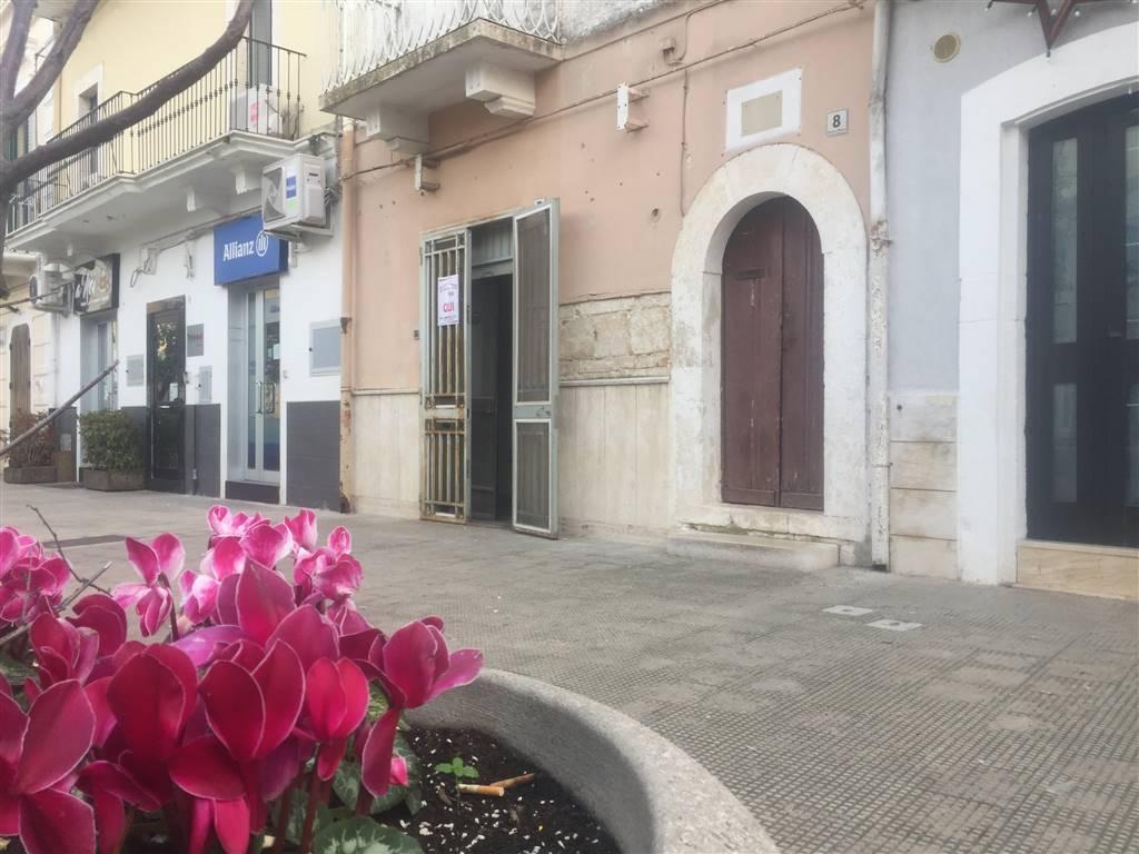 Attività / Licenza in vendita a Adelfia, 9999 locali, zona Zona: Canneto, prezzo € 55.000 | CambioCasa.it