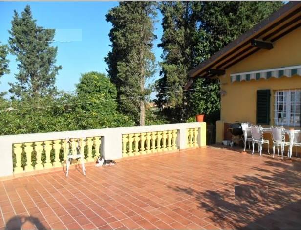 Villino, Belvedere, Crespina, ristrutturato