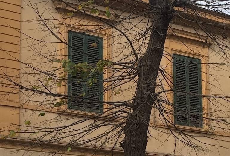 Villa, Livorno, abitabile