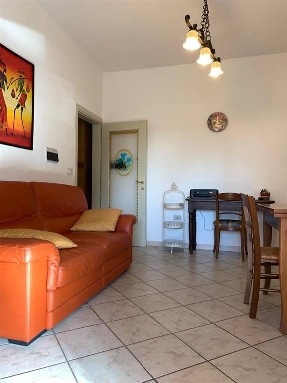 Appartamento in vendita a Collesalvetti, 2 locali, zona Località: COLLESALVETTI, prezzo € 170.000 | PortaleAgenzieImmobiliari.it