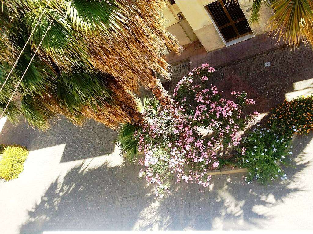 Monolocale in Via Buganza Is 99, V.le S. Martino, Messina