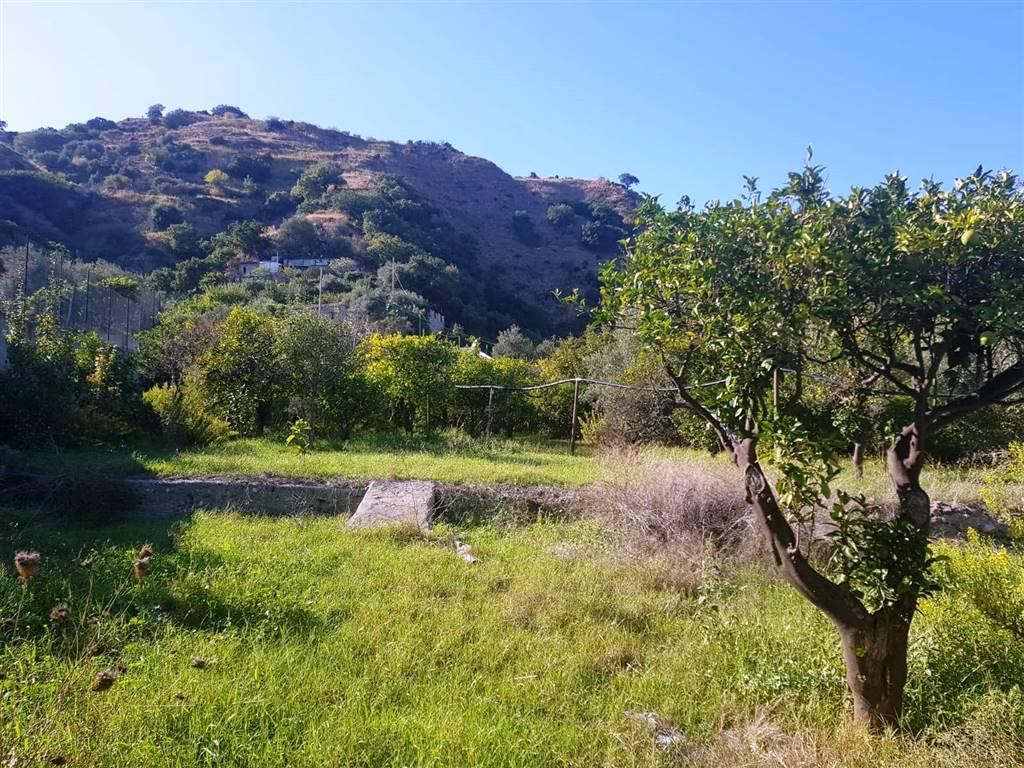Terreno agricoloaMESSINA