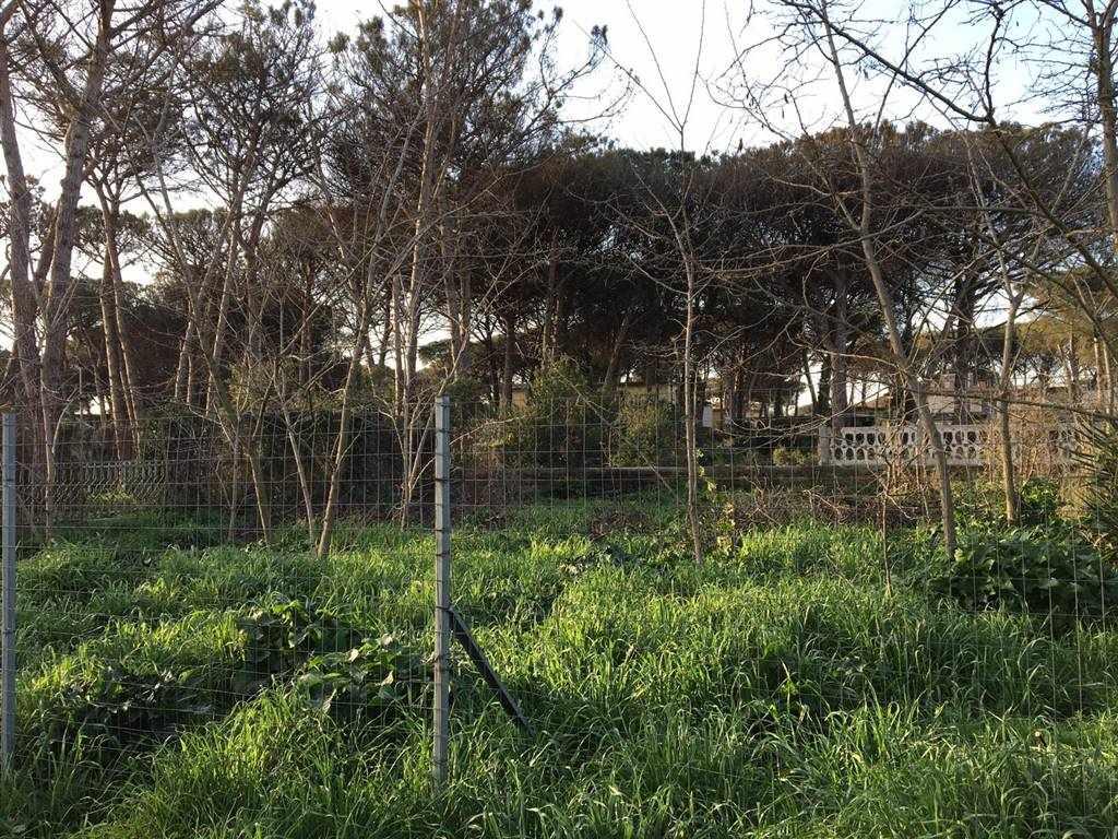 Terreno Agricolo in vendita a Castel Volturno, 9999 locali, zona Località: DOMIZIANA DA SCATOZZA A PINETAMARE, prezzo € 13.000 | CambioCasa.it