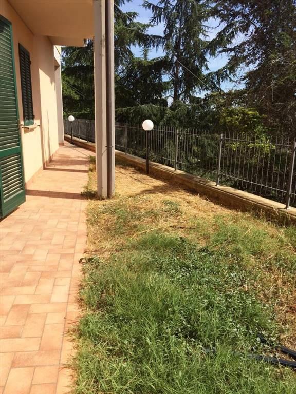 Appartamento in vendita a Montescudaio, 4 locali, Trattative riservate   CambioCasa.it