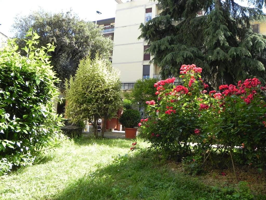 giardino condominiale - Rif. 1342