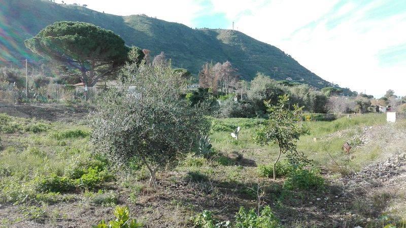 Terreno agricolo a CEFALU'