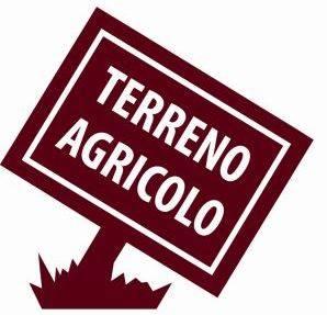 Terreno Agricolo in vendita a Rufina, 9999 locali, prezzo € 27.000   CambioCasa.it
