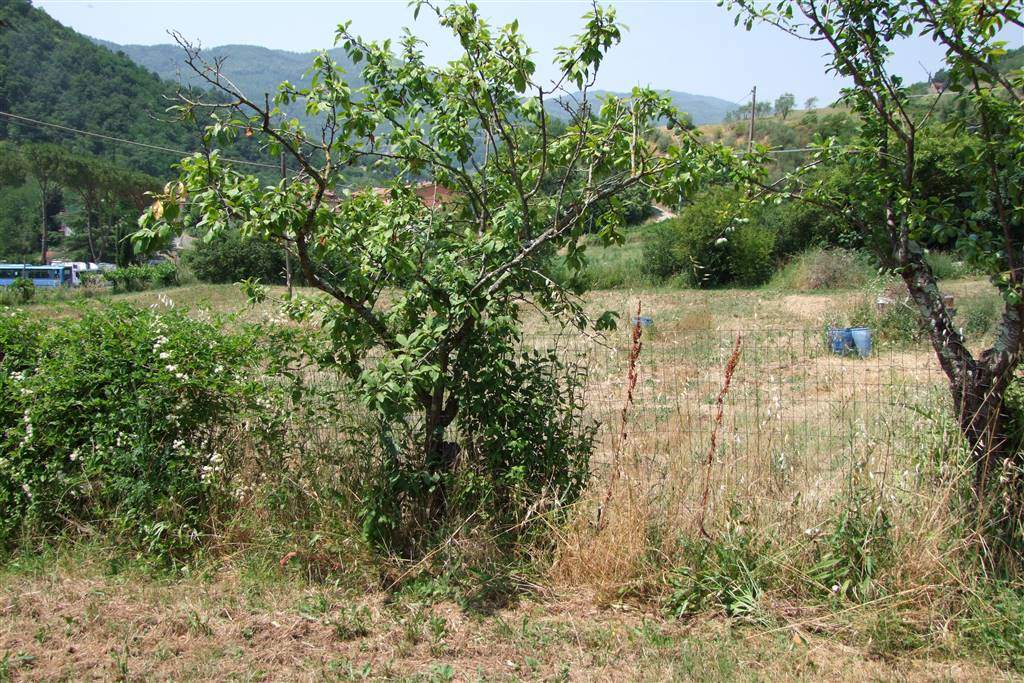 Terreni agricoliFirenze - Terreno agricolo, Carbonile, Dicomano