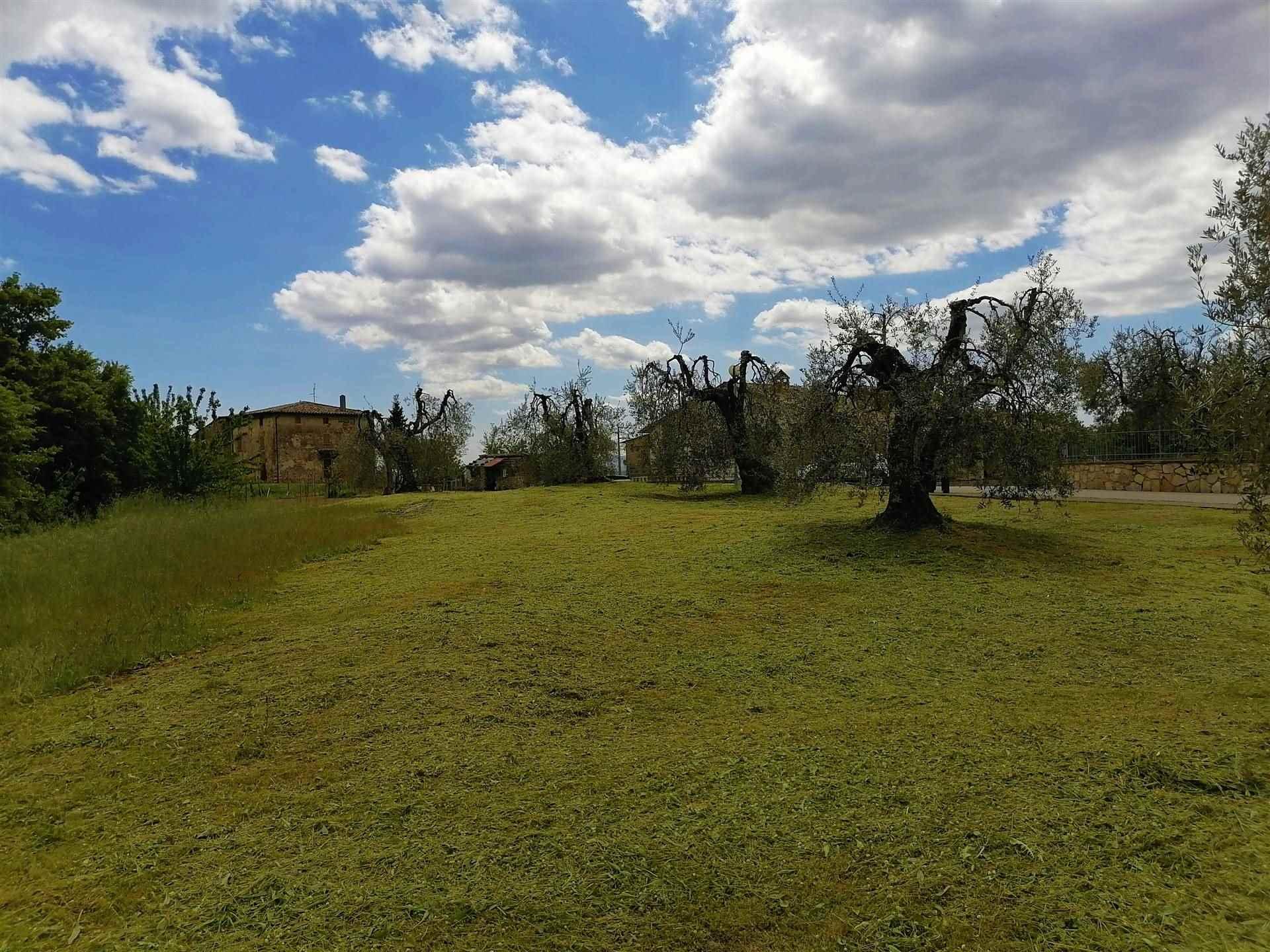 Terreno Edificabile Residenziale in vendita a Monteleone d'Orvieto, 9999 locali, zona Zona: Colle Alto e Basso, prezzo € 45.000   CambioCasa.it