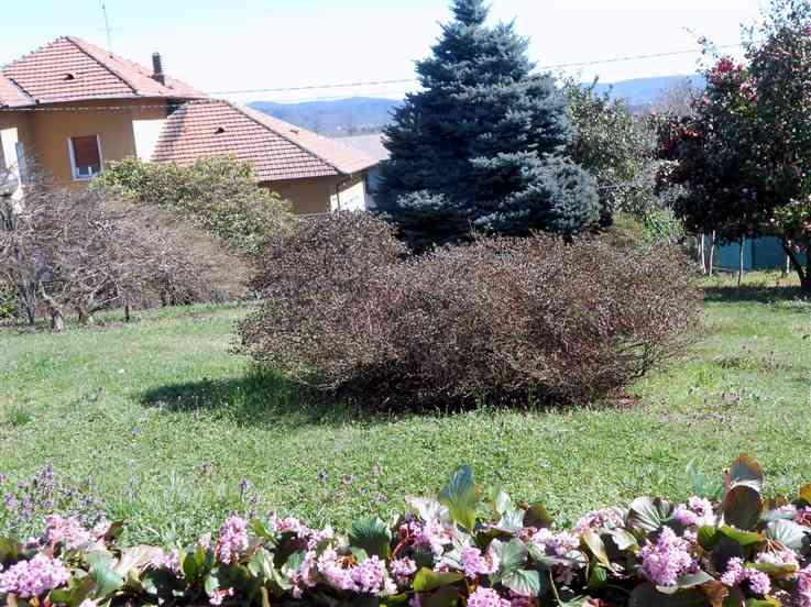 Villa in Via Glisente  43, Castelletto Sopra Ticino
