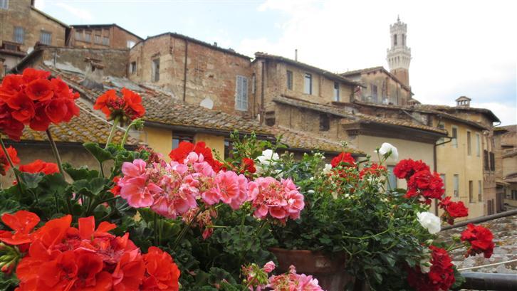 Trilocale, Centro Storico, Siena, in ottime condizioni