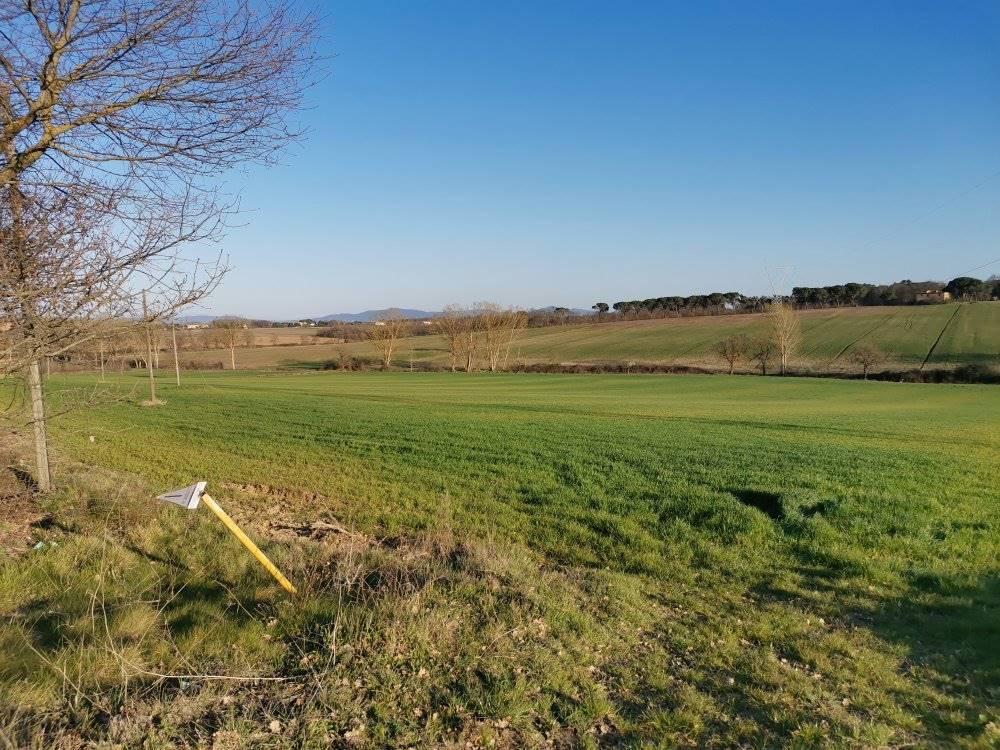 Azienda Agricola in vendita a Castiglione del Lago, 1 locali, zona Località: NARDELLI, prezzo € 176.000   PortaleAgenzieImmobiliari.it