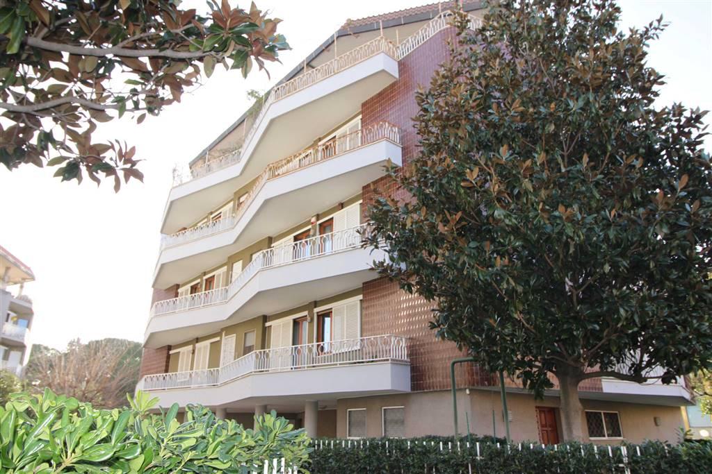 Zona STADIO - Viale Michelangelo 26 In prestigiosa palazzina appartamento libero su tre lati al secondo piano CON ascensore, composto di doppio