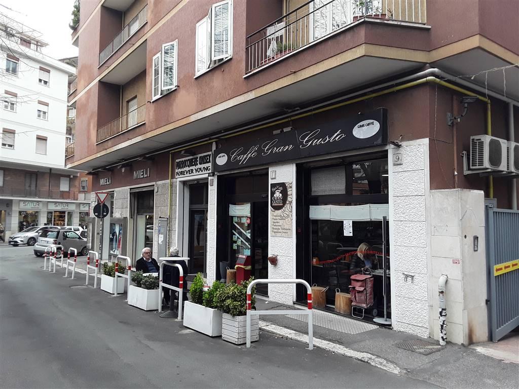 Attività commerciale in Via Antonio Sala 7, Boccea, Torrevecchia, Pineta Sacchetti, Roma