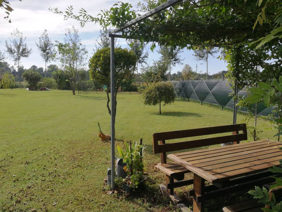 CITTÀ BASSA, LODI, Farming plot of land for sale of 900 Sq. mt., Energetic class: Not subject, composed by: , Garden, Price: € 33,000