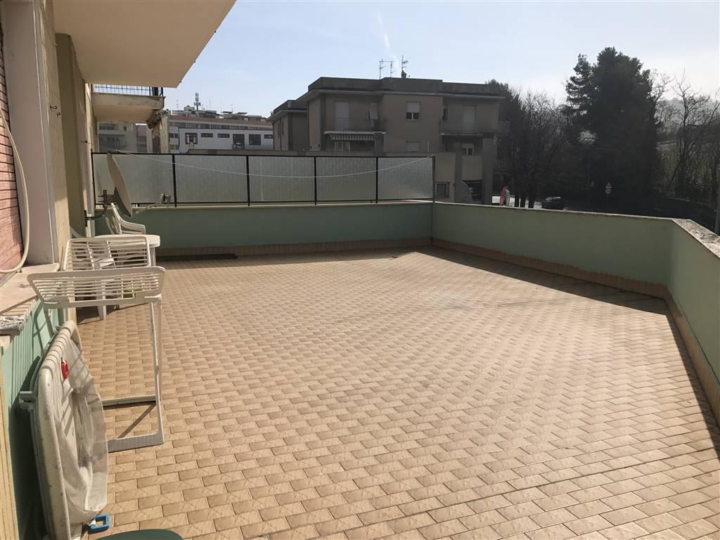 Trilocale, Pinocchio, Ancona, abitabile