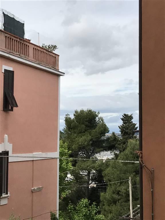 Trilocale, Semicentro, Ancona, abitabile
