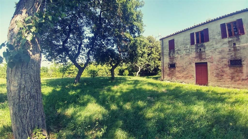 Casa singola, Maiolati Spontini